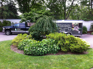 Landscaping Maintenance, Lawn Care and Installations by Milford Quality Landscaping